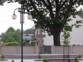 cmentarz wojskowy nr 205.JPG