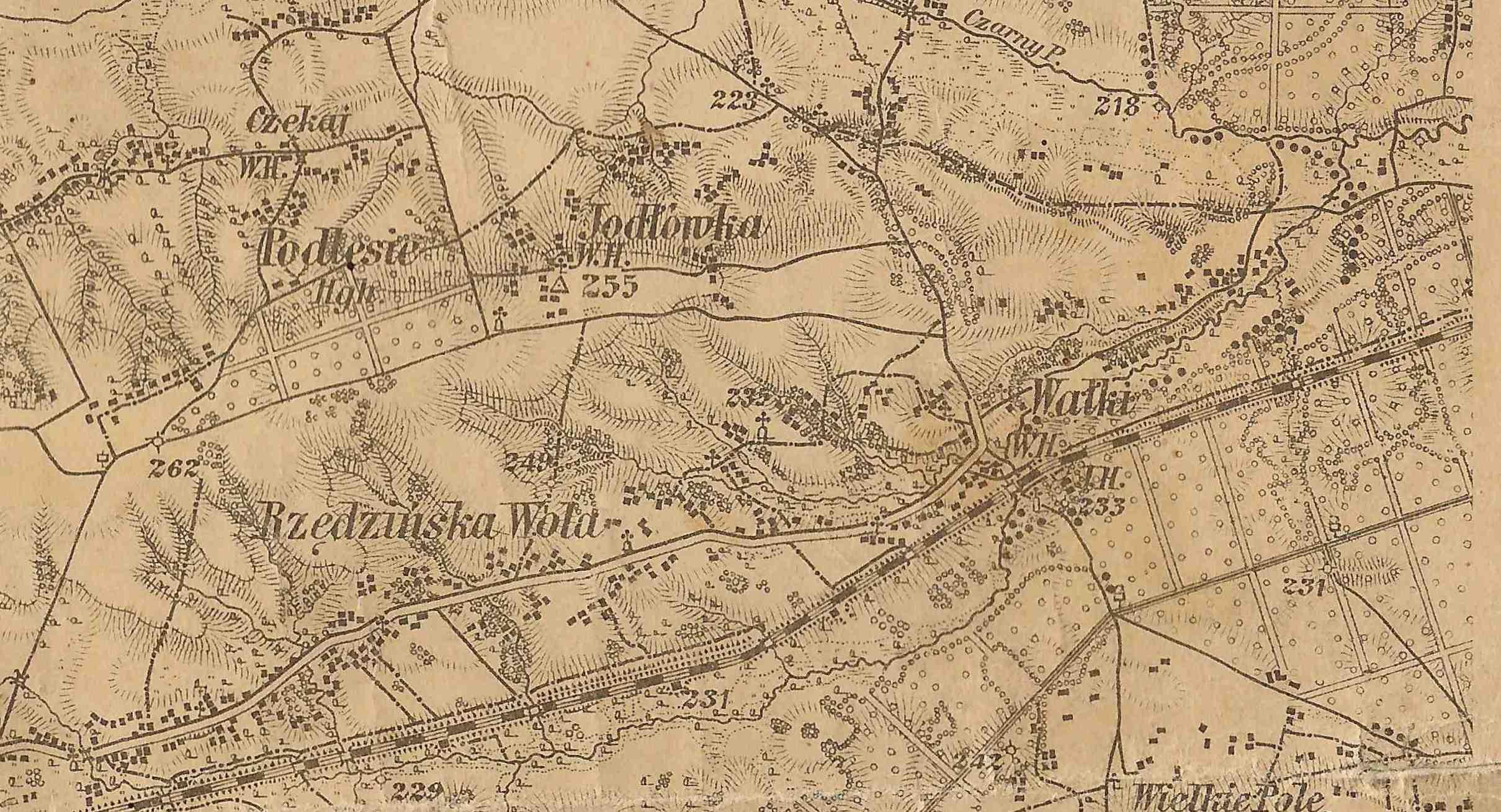 wycinek_mapa_brongiel